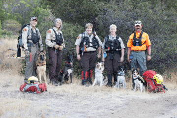 Four-Legged Heroes: The K-9 Rescue Squad