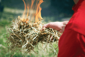 Your tinder needs to be dry, light and fluffy or thin in order for it to take a spark and burn. A wide variety of things can be used from bark to cattail duff to grasses or pine needles.