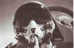 Stories of Survival: Pilot Down