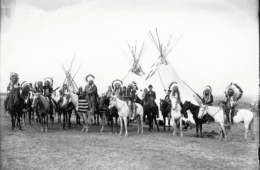 Survival Lessons from Native Americans