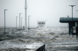 When the Levee Breaks: Surviving the Rising Tide of a Deadly Flood