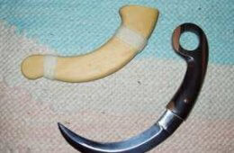 "The Karambit: Is it the ""Better"" Fighting Knife?"