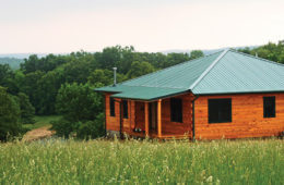 Family Fortress: Liberty Log Cabins