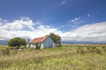 Happy Homesteaders: Tips from An Off-Grid Family