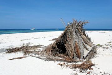 Rough-hewn Refuge: Constructing A Survival Shelter