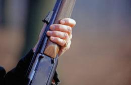 Shotguns: Pumped for Action