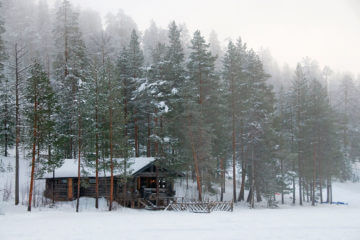 Cabin Fever: Tips for Surviving Isolation
