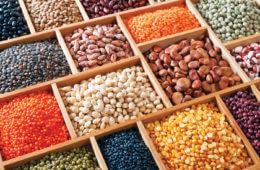 The Bottom Line on Beans