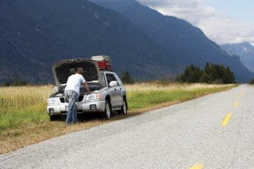 Car Talk: Vehicle Survival Strategies