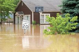 Hope Floats: Surviving Floods