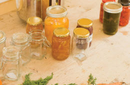Food Preservation Guide for Disasters