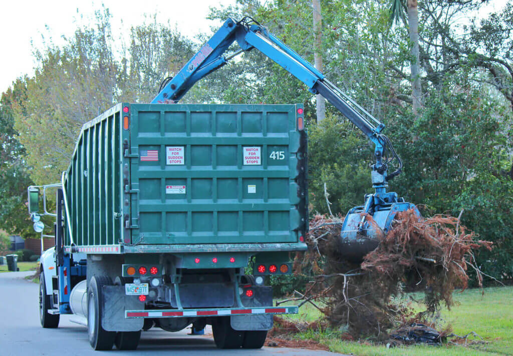 Matthew wasn't a particularly large hurricane, but it still took several weeks for large trucks to come and remove all the downed foliage.