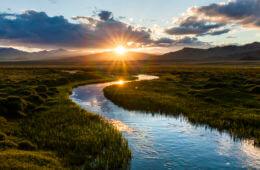 Wet 'n Wild: Finding Water in the Wilderness