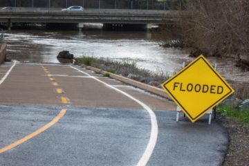 Stay on Top: How to Survive a Flood