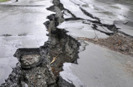 Earthquake: Staying Alive When Your World Quakes