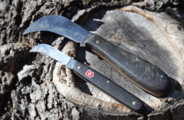 Foraging Gear: The Tools You Need To Collect, Process and Carry Natural Foods