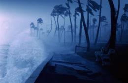 Deadly Winds: Save Lives And Property When Faced With An Approaching Hurricane