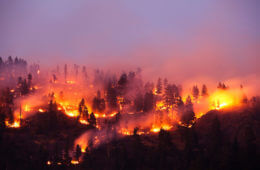 Up In Smoke: Surviving A Wildfire Might Mean Leaving Everything Behind