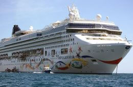 Staying Alive: Cruise Passenger Survives for 10 Hours in Open Sea