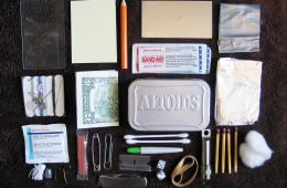 Tiny Survivor: Build Your Own Mini Survival Kit