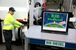 Fuel Your Survival: How to Make Biodiesel