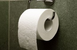 Cut the Crap: 6 Toilet Paper Alternatives