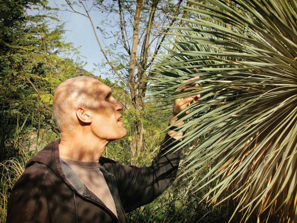 Carel Struycken inspects a yucca plant in his sustainable garden.
