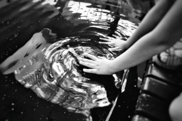 black and white photo of hands touching water