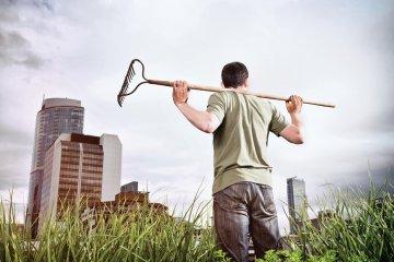 Gardening in the city