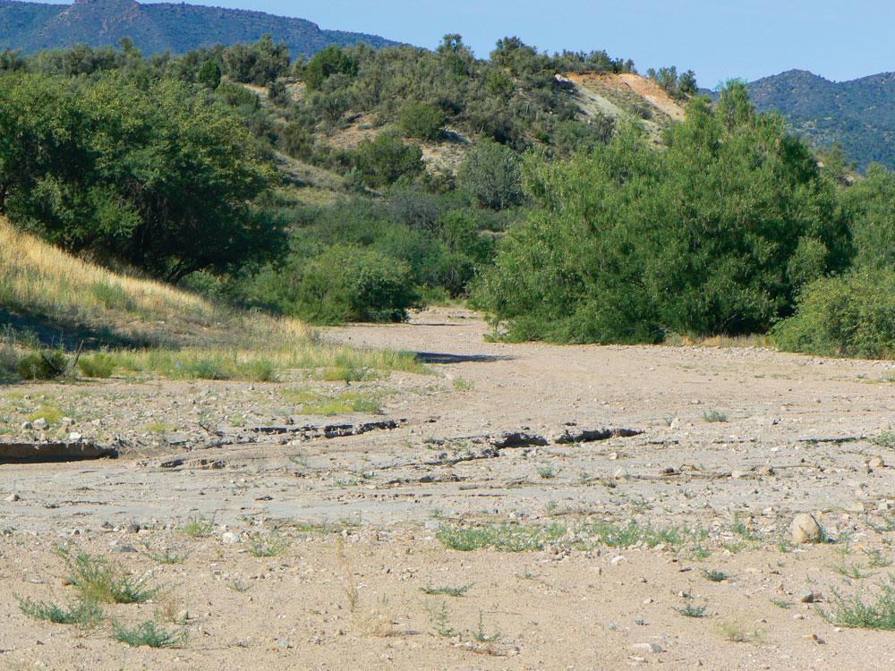 dry riverbed in Arizona