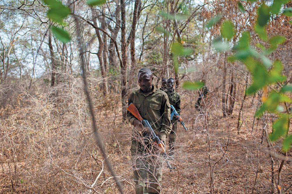 Rangers practice bush patrols in Pendjari National Park in Benin, West Africa.