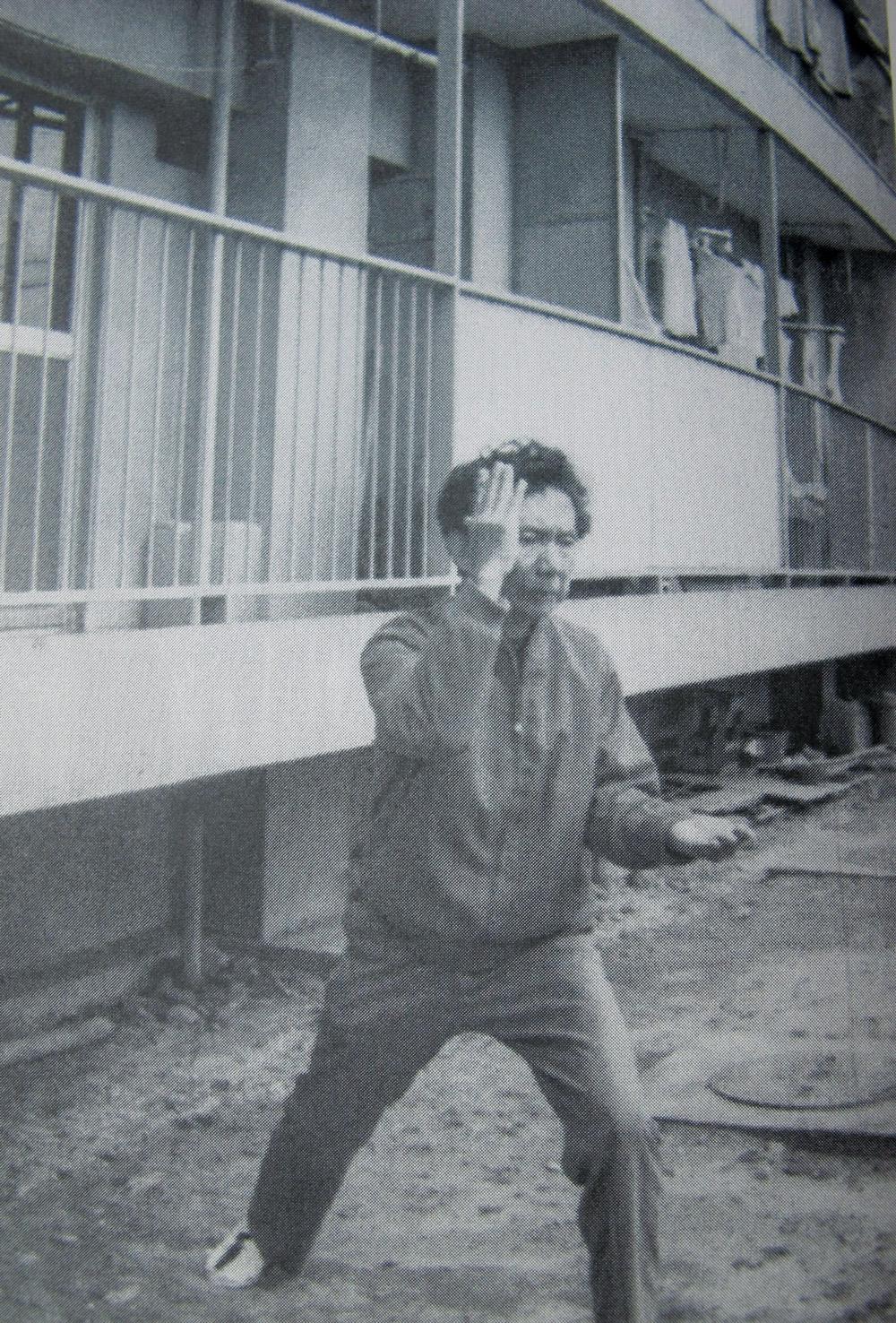 Master Suzuki demonstrates a move during Boehm's training.