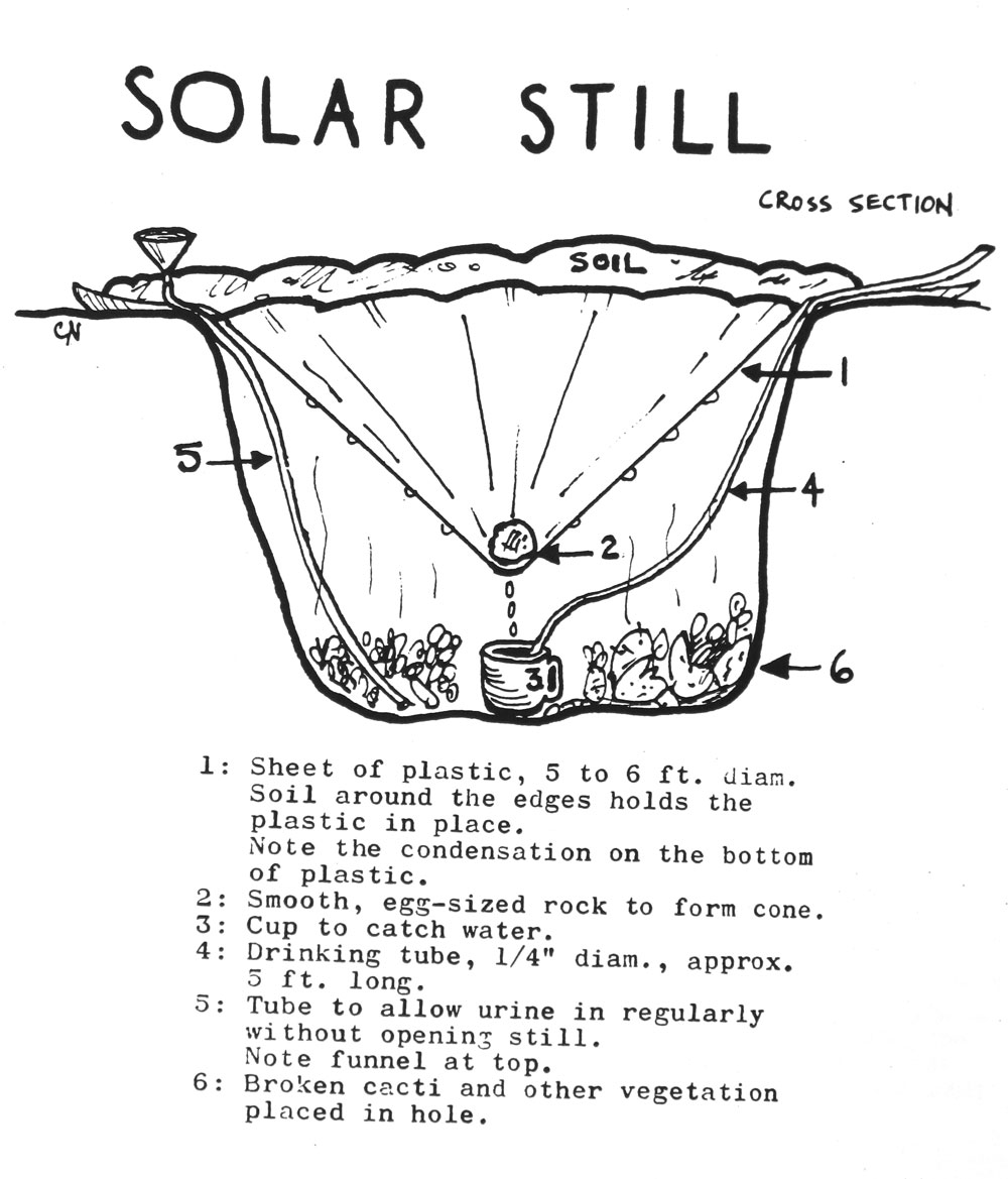 This diagram shows the cross-section of a solar still.