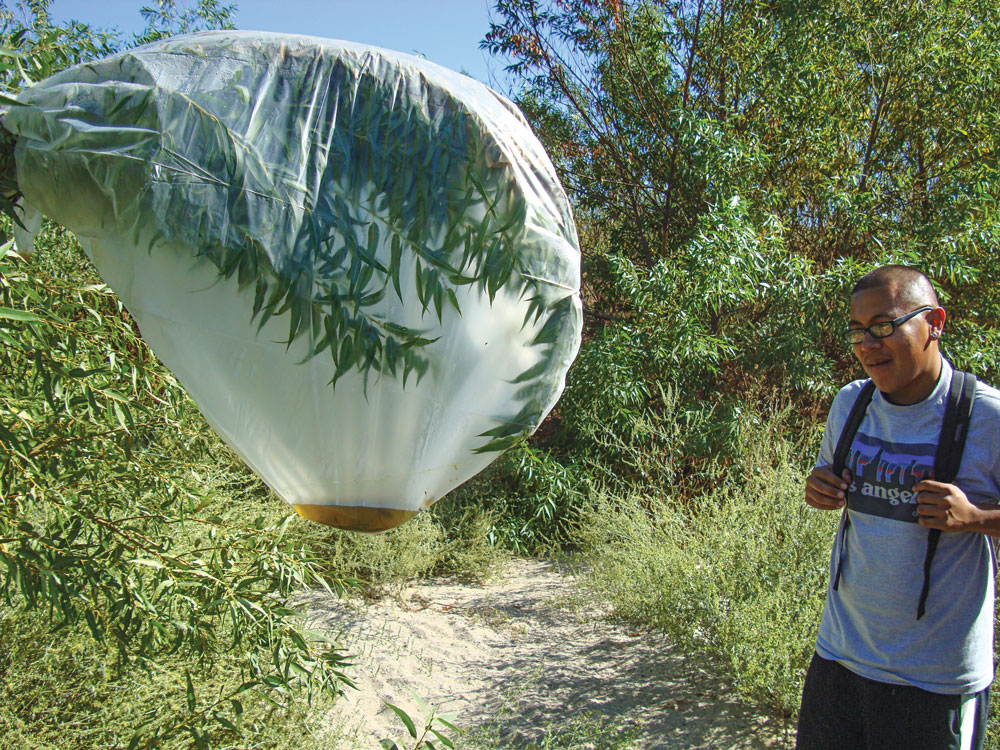 A School of Self-Reliance student looks at the willow water that was collected in a transpiration bag. The author had attached the bag 24 hours prior.