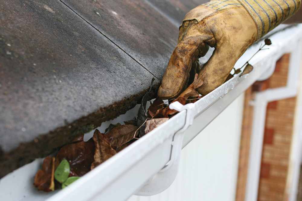 Have a ladder and no fear of heights? You might be able to make a few dollars cleaning gutters or doing other chores in your area.