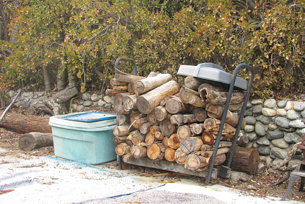 Be sure to have plenty of firewood set aside for your outdoor cooking and campfire.
