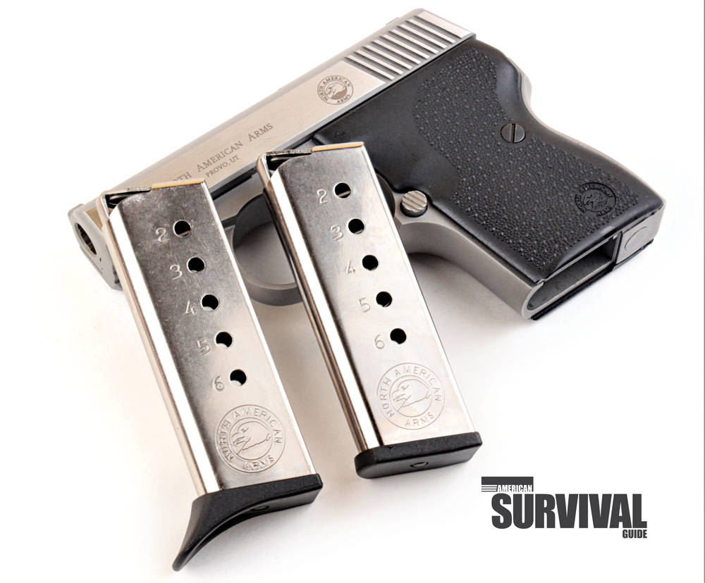The Guardian comes with two six-round mags.